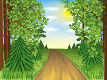 Realistic landscape - spring or summer forest vector illustration