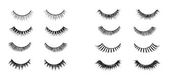 Realistic lashes set. Lashes extensions vector illustration. vector illustration