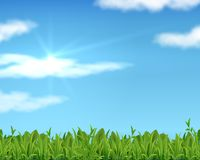 Realistic lawn and sky. 3D spring grass background with sun and clouds. Vector banner for business presentation and royalty free illustration