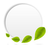 Realistic Leaves Background Royalty Free Stock Images
