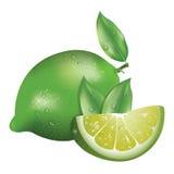 Realistic lemon Stock Image