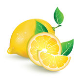 Realistic lemon with slices of lemon Stock Photos