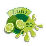 Realistic lime. Royalty Free Stock Photos