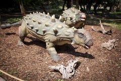 Realistic model of dinosaur Ankylosaurus royalty free stock photography