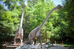 Realistic model of dinosaur - Brachiosaurus Stock Images