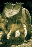 Realistic model of dinosaur - Chasmosaurus Royalty Free Stock Photography