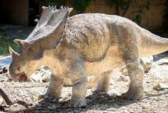 Realistic model of dinosaur - Chasmosaurus Stock Photo