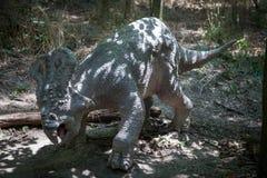 Realistic model of dinosaur Protoceratops Royalty Free Stock Photography