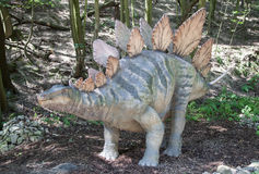 Realistic model of dinosaur - Stegosaurus Stock Image