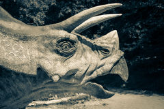 Realistic model of dinosaur. Triceratops Royalty Free Stock Images