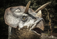 Realistic model of dinosaur Triceratops Stock Photos