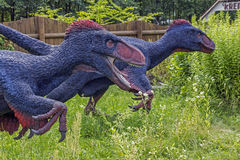 Realistic model of feathered dinosaurs Royalty Free Stock Image