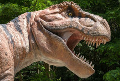 Realistic model of Tyrannosaurus Rex Royalty Free Stock Images