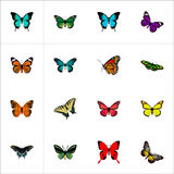 Realistic Monarch, Butterfly, Tropical Moth And Other Vector Elements. Set Of Moth Realistic Symbols Also Includes Stock Photo