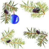 Realistic needles, spruce branches Christmas tree, isolated detailed , frame of spruce branches, template for design, bump, Stock Photos