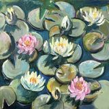 Water lilies bloomed in lake royalty free stock image