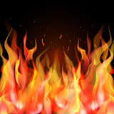 realistic orange and red fire flame on black background. With place for text. Vector illustration Stock Image