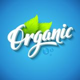 Realistic organic logo Royalty Free Stock Photos