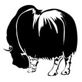 Realistic outline bison vector illustration. Stock Photo