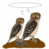 Realistic owls and thinking balloon. And white background Stock Photo