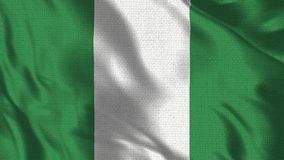 Realistic 1920x1080p 30 fps flag of the Nigeria waving in the wind. vector illustration
