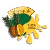 Realistic pineapple. Stock Photos