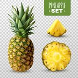 Realistic Pineapple Set. Fresh ripe sliced pineapple set  on transparent background realistic vector illustration Royalty Free Stock Photo