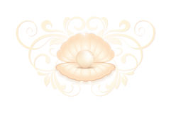 Realistic pink pearl in the shell. Realistic natural large bright pearl in the shell open with vintage floral ornament. Clip on a white background Stock Photo
