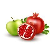 Realistic Pomegranate or garnet on the white background. Vector illustration. EPS10 Royalty Free Stock Photo