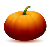 Realistic Pumpkin Royalty Free Stock Photography