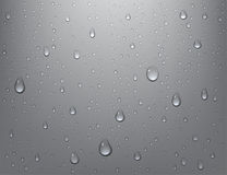 Free Realistic Pure Water Drops On Isolated Background. Steam Shower Condensation On Vertical Surface. Vector Illustration. Stock Photography - 96755662