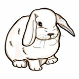 Realistic rabbit white. And white background Stock Photo