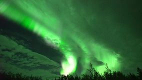 Aurora borealis northern lights in Whitehorse, Canada. Realistic real time not timelapse aurora borealis northern lights in Whitehorse, Canada, at 00:12 on stock video