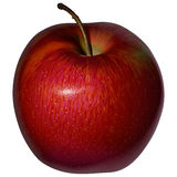 Realistic red Apple on a blank background Royalty Free Stock Image