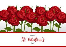 Realistic red rose valentines card. Bouquet realistic red rose St Valentine`s day card. Love flower Valentines banner frame. Beautiful holiday blossom invitation Royalty Free Stock Images