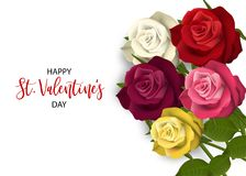 Realistic red rose valentines card. Multicolor realistic red rose St Valentine`s day card. Love flower bouquet Valentines banner frame. Beautiful holiday blossom Royalty Free Stock Photography