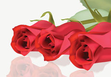 Realistic red roses bouquet Beautiful Flowers Roses Postcard for Happy Valentines Day, Birthday, Anniversary. Stock Images