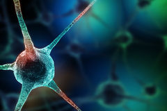Realistic rendering of neurone - on the green background Stock Photo