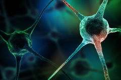 Realistic rendering of neurone - on the green background.  Royalty Free Stock Images