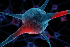 Realistic rendering of neurone - in red colors Royalty Free Stock Images
