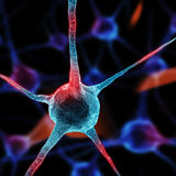 Realistic rendering of neurone - in red colors Royalty Free Stock Photos