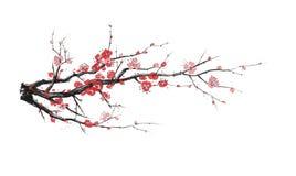 Realistic sakura blossom - Japanese cherry tree isolated on white background. Artistic branch sakura blossom. Vector