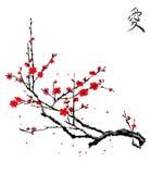 Realistic sakura blossom - Japanese cherry tree. Isolated on white background royalty free illustration