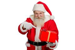 Realistic Santa Claus with present box. Studio portrait of Santa Claus with red gift box. Santa Claus with real beard holding Christmas present and pointing on Royalty Free Stock Photo