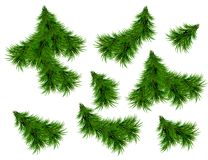 Realistic Set of Green Fir Branches. Christmas tree branches Isolated on white Background for Greeting Card, Flyers, Banners. Vector Illustration Stock Images