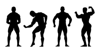 Bodybuilders silhouettes. 4 realistic silhouettes of bodybuilders in different postures Stock Illustration