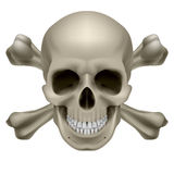 Realistic skull and bones Stock Photos