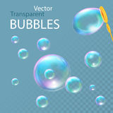Realistic soap bubbles. Vector illustration Royalty Free Stock Image