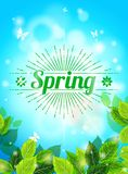 Realistic Spring background, blue sky, green leaves. Sunburst text, glare, glow. Template for web design. Vector illustration Stock Images