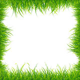 Realistic Square Green Grass Frame. Vector Stock Photo